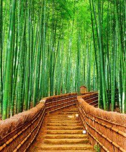 Escalera Bambu