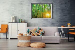 Lienzo Salon Bambu Bosque