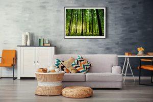 Lienzo Salon Bosque verde